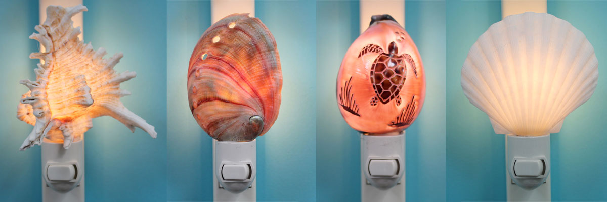 Seashell Night LIghts